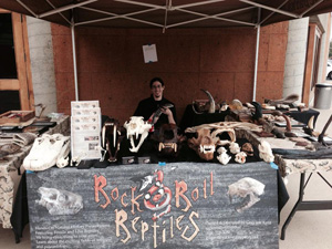 Rock N Roll Reptiles Pricing